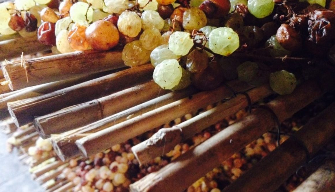 Castello_Sonnino_Malvasia_Italy-Food-Roots-no-filter